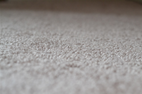 dirty_carpet